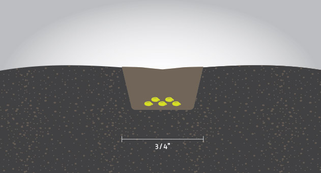 seed-placement-illustration_vos_paired-row-0802