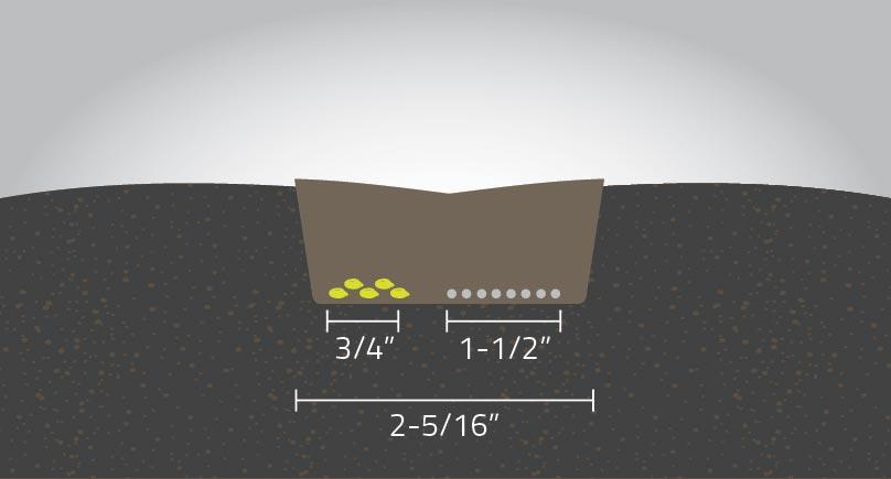 Seeding-diagram_0711